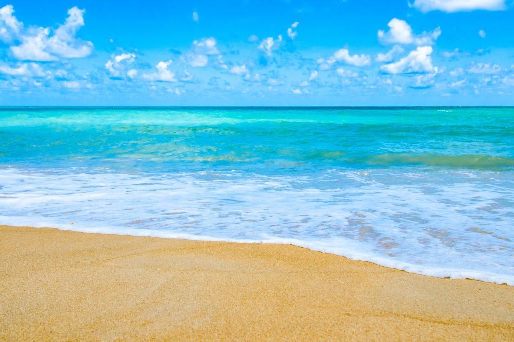 Hawaii Beach Image